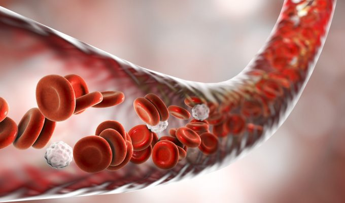 9 BEST FOODS YOU CAN EAT TO INCREASE BLOOD FLOW-min