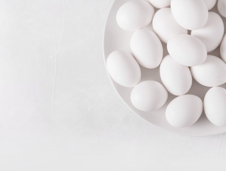 WHAT DO YOU NEED TO KNOW ABOUT EGGS-Wallpaper