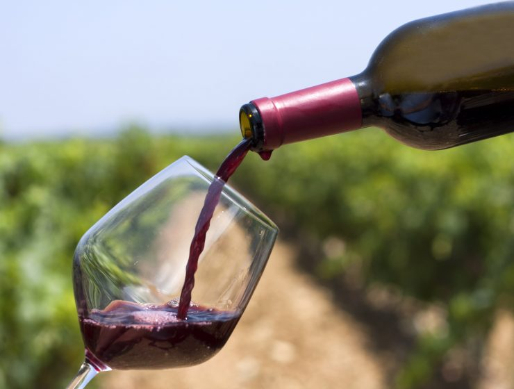 BEST NON-ALCOHOLIC SUBSTITUTES FOR WINE-min