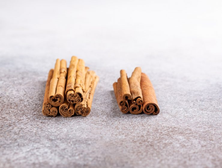 DIFFERENCES BETWEEN CASSIA AND CEYLON CINNAMON-min