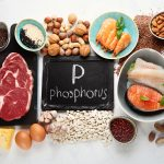 FOODS RICH IN PHOSPHORUS-min