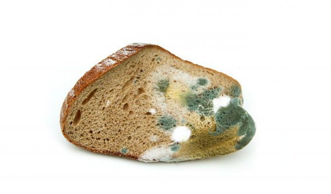 IS MOLDY BREAD SAFE TO EAT-min