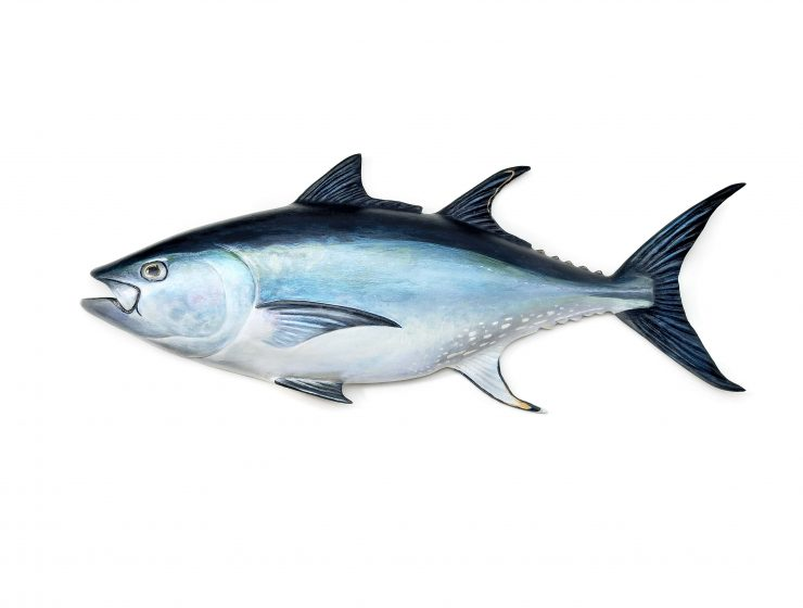 IS TUNA CONTAINING MERCURY SAFE FOR HEALTH-min