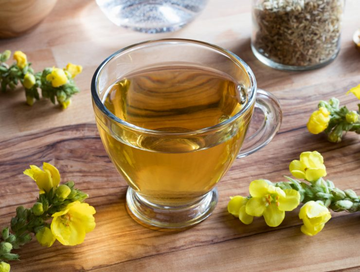 WHY YOU SHOULD START CONSUMING MULLEIN TEA-min